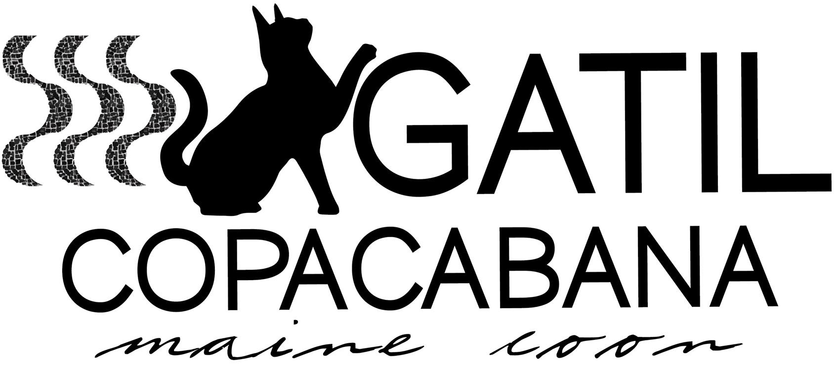 Gatil Copacabana Maine Coon